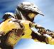 Play FMX Team 2
